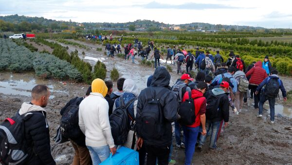 Migrants make their way after crossing the border at Zakany, Hungary October 16, 2015. - Sputnik International