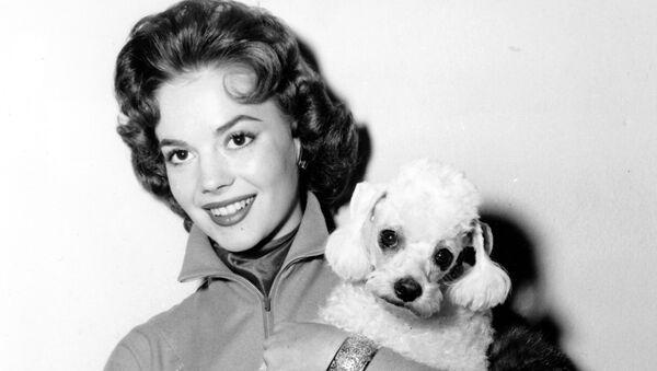 Actress Natalie Wood poses with her pet poodle Fifi at a Hollywood studio, Calif., on Oct. 28, 1955. - Sputnik International