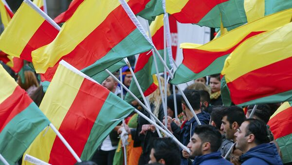 People carry flags during a demonstration organised by Kurds, in Frankfurt, Germany, March 18, 2017 - Sputnik International