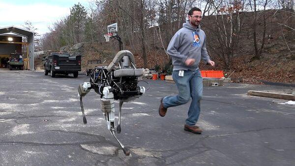Boston Dynamics' quadruped robot, Spot. - Sputnik International