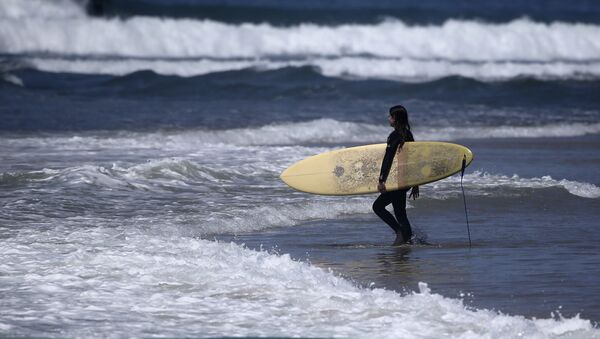 A surfer strolls into the waves at Cardiff State Beach in Encinitas, Calif. - Sputnik International