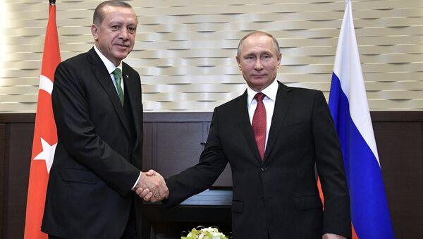 President Vladimir Putin at a meeting with President of Turkey Recep Tayyip Erdogan, left - Sputnik International