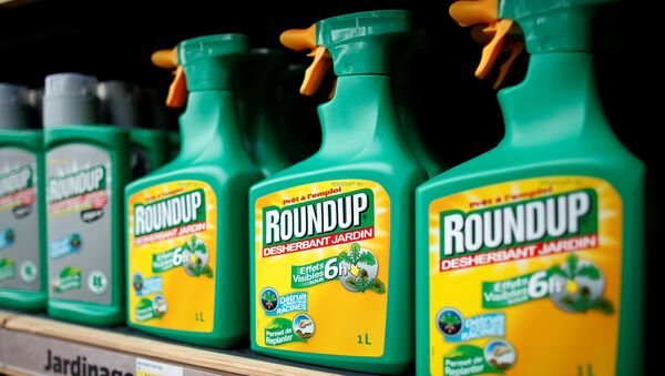 Monsanto's Roundup weedkiller atomizers are displayed for sale at a garden shop at Bonneuil-Sur-Marne near Paris, France, June 16, 2015. - Sputnik International