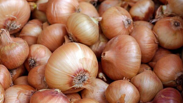 Onion - Sputnik International