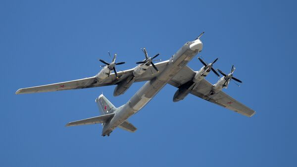 A Tupolev Tu-95MS Bear strategic bomber - Sputnik International