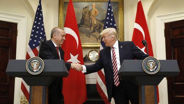 US President Donald Trump's meeting with Turkish President Recep Tayyip Erdogan in Washington on May 16, 2017 - Sputnik International