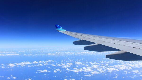 Wing of plane - Sputnik International