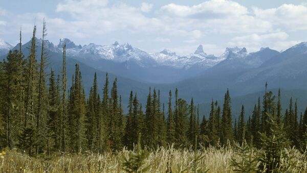 Yergaki range in the West Sayany mountain range, southern Siberia. (File) - Sputnik International
