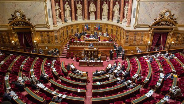 The French Senate (the upper chamber of the Parliament) - Sputnik International