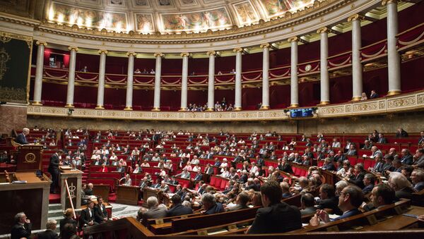 A meeting of the National Assembly (lower house of parliament) in France - Sputnik International