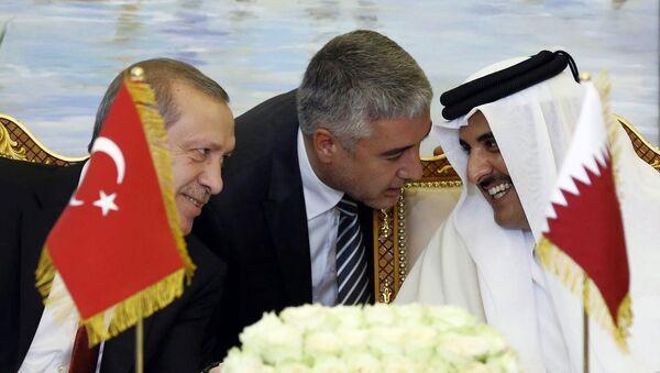 Turkey's President Recep Tayyip Erdogan, and Qatar's Emir Tamim bin Hamad Al Thani speak, with unidentified Turkish translator at centre, during a meeting in Doha, Qatar (File) - Sputnik International