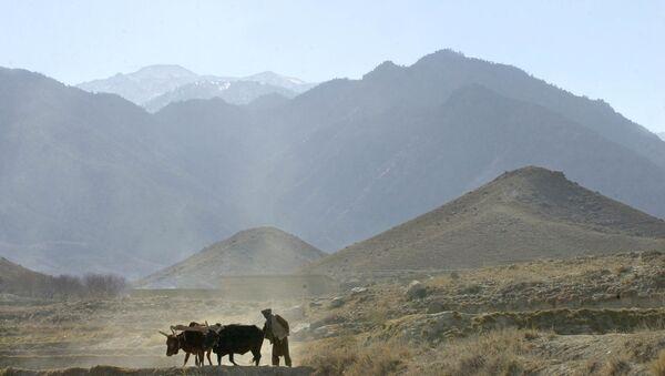 Afghanistan Daesh - Sputnik International