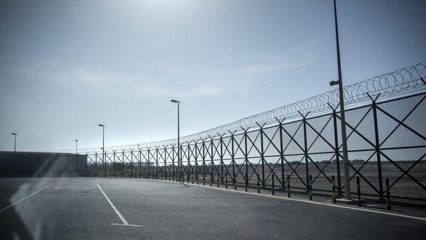 Fencing on the closed border between Qatar and Saudi Arabia - Sputnik International