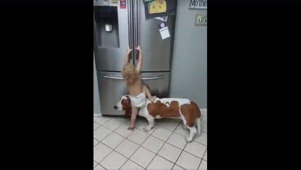 Child and dog - Sputnik International