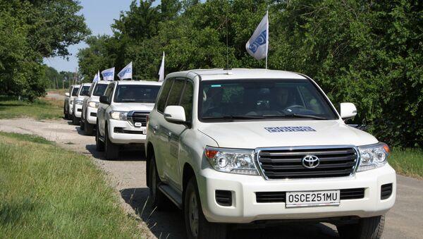 OSCE SMM Principal Deputy Chief Monitor Alexander Hug vists Donbass - Sputnik International