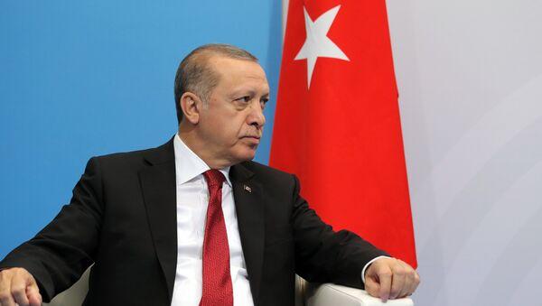 President of Turkey Recep Tayyip Erdogan during a meeting with Russian President Vladimir Putin on the sidelines of the G20 summit in Hamburg - Sputnik International