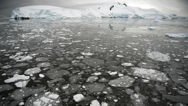 Ледяные поплавки на поверхности моря у Антарктического полуострова - Sputnik International