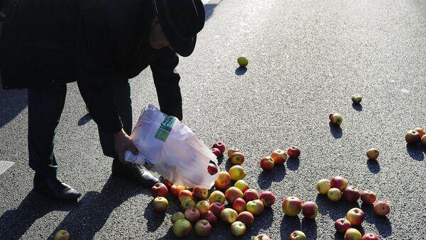 Polish farmers and horticulturists protest in Warsaw - Sputnik International