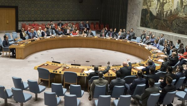 The United Nations Security Council votes on a new sanctions resolution that would increase economic pressure on North Korea to return to negotiations on its missile program, Saturday, Aug. 5, 2017 at U.N. headquarters - Sputnik International