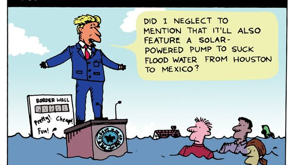 Trump Houston Border Cartoon - Sputnik International