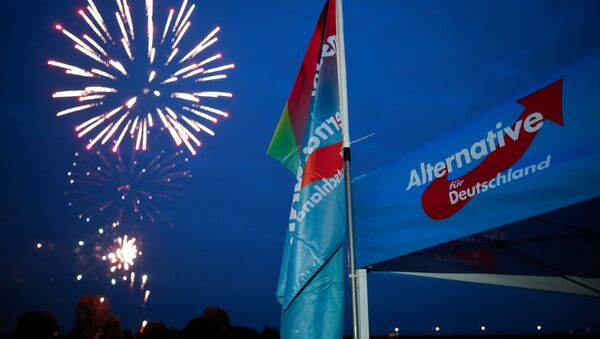 Germany's Alternative for Germany AfD party burn a private fireworks during an election campaign tour by ship on the river Rhine near Krefeld, western Germany, September 4, 2017. - Sputnik International