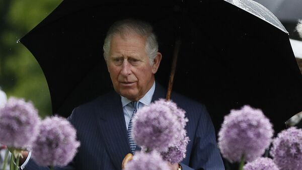 Britain's Prince Charles looks at a display of alliums during a visit to the Royal Botanic Gardens, Kew, in London, Wednesday, May 17, 2017. - Sputnik International