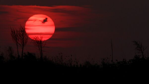 Red sun - Sputnik International