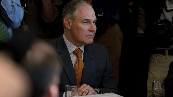 Environmental Protection Agency Administrator Scott Pruitt attends a Cabinet meeting with President Donald Trump, Monday, June 12, 2017, in the Cabinet Room of the White House in Washington. - Sputnik International