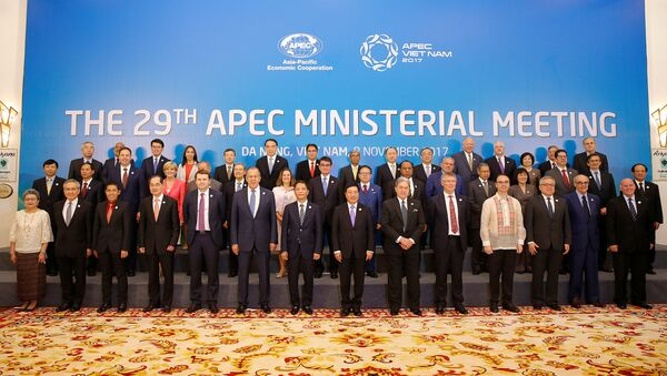 Ministers gather for a group photo after the APEC Ministerial Meeting (AMM) ahead of the Asia-Pacific Economic Cooperation (APEC) Summit leaders meetings in Danang, Vietnam, November 8, 2017 - Sputnik International