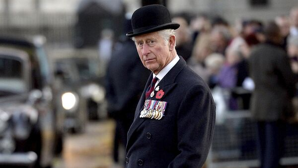 Britain's Prince Charles, The Prince of Wales after laying a wreath during Remembrance Day at the Guards' Memorial in London, Sunday Nov. 12, 2017 - Sputnik International