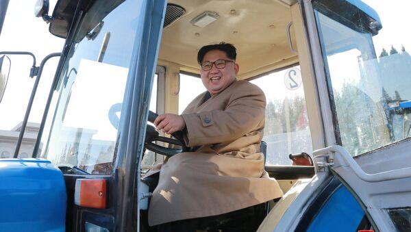 North Korean leader Kim Jong Un gives field guidance to the Kumsong Tractor Factory in Pyongyang - Sputnik International