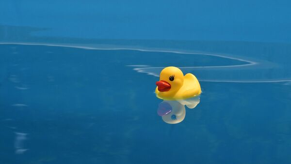 Rubber duck - Sputnik International