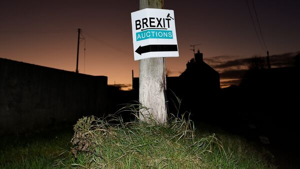 A sign for a Brexit auction is seen at sunset in the border town of Jonesborough, Northern Ireland, November 29, 2017 - Sputnik International