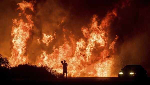 A motorists on Highway 101 watches flames from the Thomas fire leap above the roadway north of Ventura, Calif., on Wednesday, Dec. 6, 2017. - Sputnik International