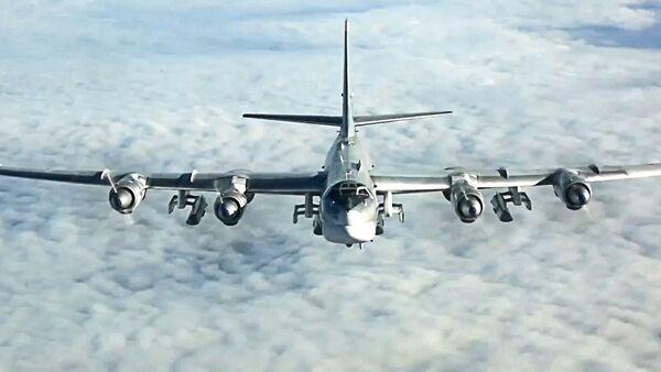 A Tupolev Tu-95MS Bear strategic bomber. - Sputnik International