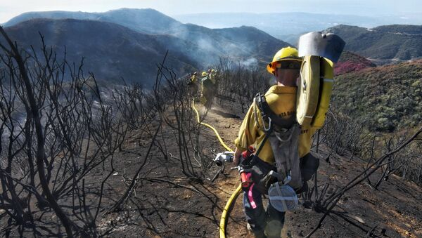 In this photo provided by the Santa Barbara County Fire Department, Santa Barbara County Firefighters haul dozens of pounds of hose and equipment down steep terrain below E. Camino Cielo to root out and extinguish smoldering hot spots in Santa Barbara, Calif., Tuesday, Dec. 19, 2017. Officials estimate that the Thomas Fire will grow to become the biggest in California history before full containment, expected by Jan. 7, 2018. - Sputnik International