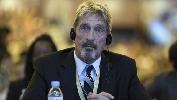Founder of the first commercial anti-virus program that bore his name, John David McAfee listens during the 4th China Internet Security Conference (ISC) in Beijing, Tuesday, Aug. 16, 201 - Sputnik International