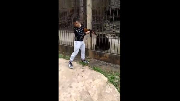 Man filmed killing Asiatic Black Bear in Myanmar - Sputnik International