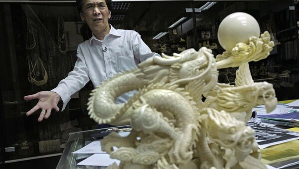 of Lise Carving and Jewellery gestures during an interview at his workshop in Hong Kong. Chan complains that department stores stopped selling his ivory on consignment after protests by conservation groups. He denies the ivory industry is responsible for elephant deaths in Africa, despite clear evidence that poaching is the main factor. - Sputnik International