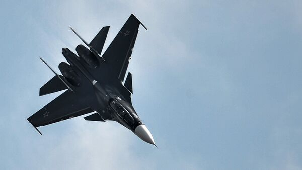 Su-30SM fighter jet. File photo - Sputnik International