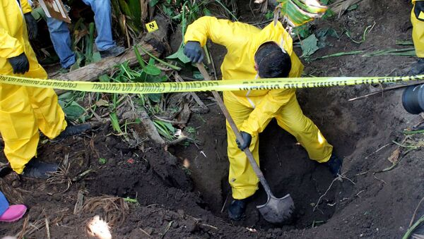 In this Jan. 15, 2018 photo, released by the General Prosecutor of Nayarit, a man digs up a clandestine grave in Xalisco, Nayarit state, Mexico - Sputnik International