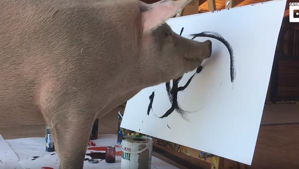 Porky Picasso: From Slaughterhouse to Showroom - Sputnik International