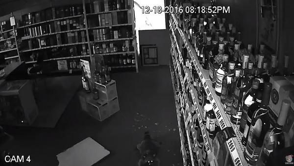 Stealthy Raccoon Makes a Late Night Liquor Heist - Sputnik International