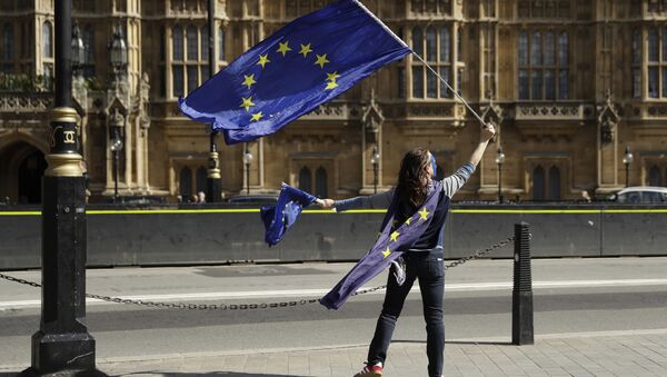 A pro-remain supporter of Britain staying in the EU, holds up an EU flag whilst taking part in an anti-Brexit protest outside the Houses of Parliament in London (File) - Sputnik International