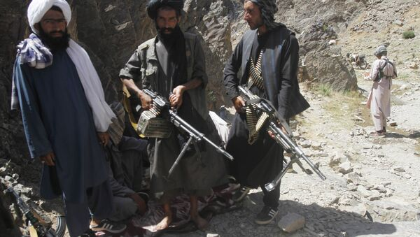Members of a breakaway faction of the Taliban fighters guard during a patrol in Shindand district of Herat province, Afghanistan (File) - Sputnik International