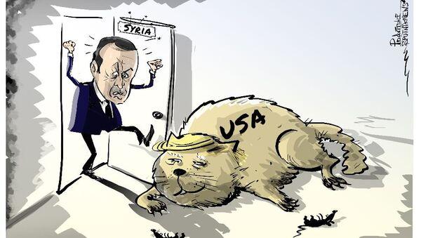Erdogan vs US - Sputnik International