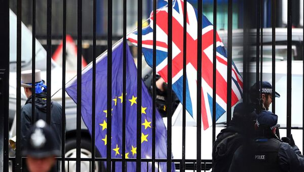 A demonstrator carries a Union Jack and a European Union flag as the EU's chief Brexit negotiator Michel Barnier visits Downing Street in London, Britain - Sputnik International
