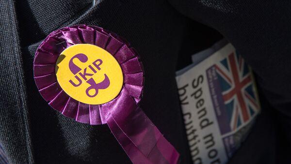 A UK Independence Party (UKIP) rosette (File) - Sputnik International