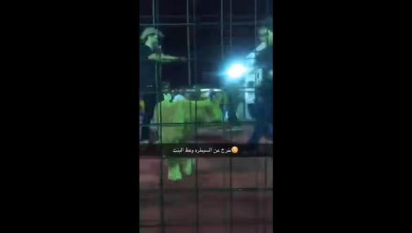 Lion attacks girl after trainer allows group of kids into enclosure - Sputnik International