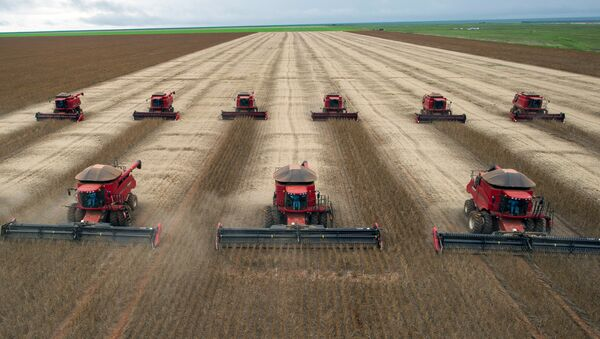 Combine harvesters crop soybeans. (File) - Sputnik International